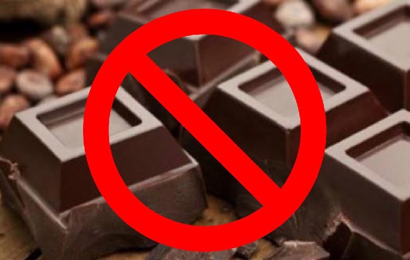 Nuovo decreto legge vieta la vendita di cioccolato in Italia